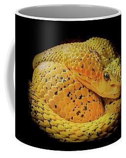 Eyelash Viper Coffee Mug by Karen Wiles
