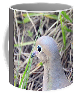 Coffee Mug featuring the photograph Eyeliner And All by Sally Sperry