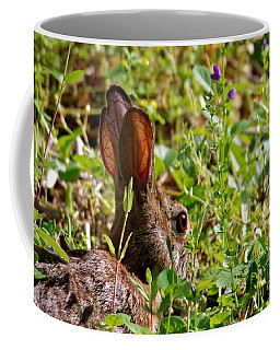 Eyes And Ears Open Coffee Mug