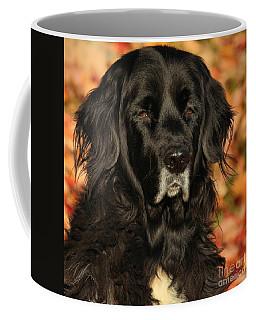 Eyes Of Autumn Coffee Mug