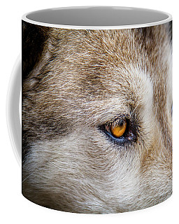 Eyes Of The Gray Wolf Coffee Mug