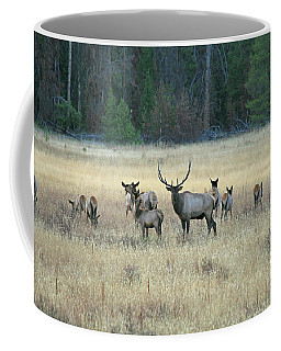 Faabullelk110 Coffee Mug