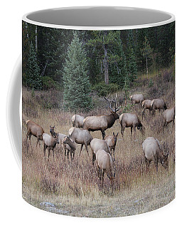 Faabullelk111rmnp Coffee Mug