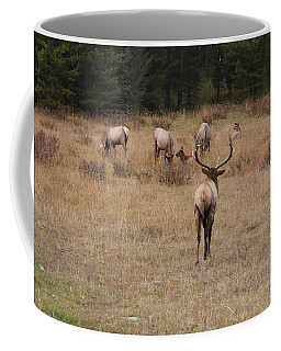 Faabullelk113rmnp Coffee Mug