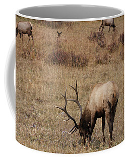 Faabullelk114rmnp Coffee Mug