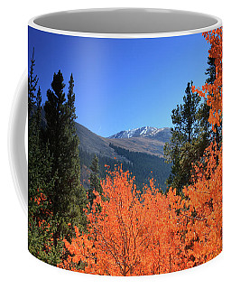 Faafallscene110 Coffee Mug