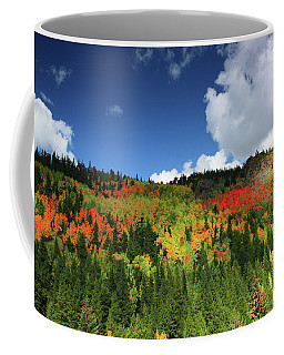 Faafallscene115 Coffee Mug