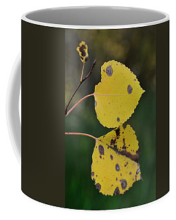 Coffee Mug featuring the photograph Fading Aspen I by Ron Cline