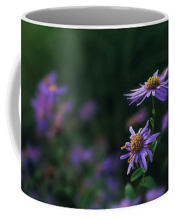 Fading Beauty Coffee Mug