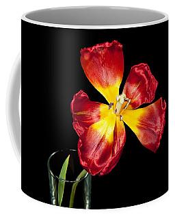 Fading Beauty Coffee Mug