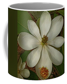 Fading Glory Coffee Mug