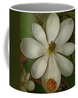 Coffee Mug featuring the photograph Fading Glory by Robert Knight