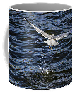 Coffee Mug featuring the photograph Fair Winds by Ray Congrove
