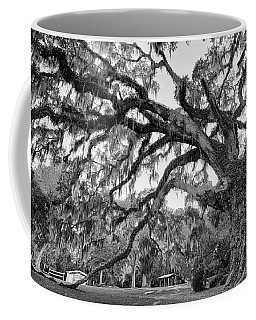 Fairchild Tree Coffee Mug