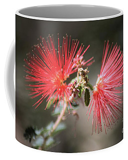 Fairy Duster Coffee Mug