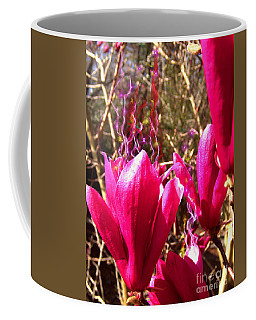 Fairy Fire Coffee Mug