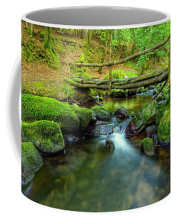 Fairy Glen Bridge Coffee Mug