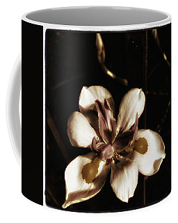 Coffee Mug featuring the photograph Fairy Iris. A Butterfly Landed On My by Mr Photojimsf