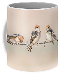 Fairy Martins Coffee Mug
