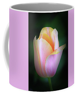 Coffee Mug featuring the photograph Fairy Tale Tulip by Michael Hubley
