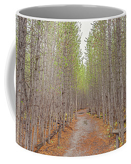 Coffee Mug featuring the photograph Fall Aspen Trail  by Scott McGuire