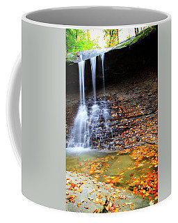 Fall At Blue Hen Falls Coffee Mug