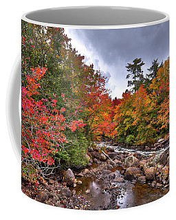Coffee Mug featuring the photograph Fall At Indian Rapids by David Patterson