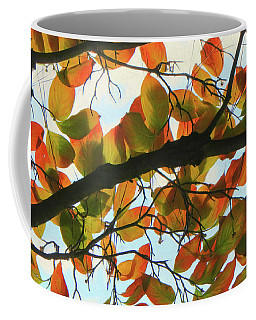 Fall Background Landscape Coffee Mug