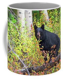 Fall Bear Coffee Mug by Scott Warner