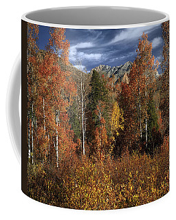 Coffee Mug featuring the photograph Fall Brilliance by Leland D Howard