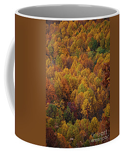 Coffee Mug featuring the photograph Fall Cluster by Eric Liller