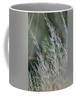Fall Color 5528 02 Coffee Mug