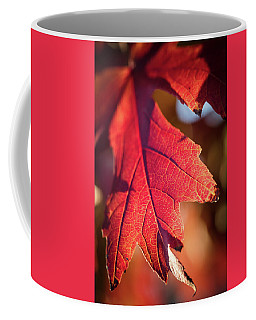Fall Color 5528 11 Coffee Mug