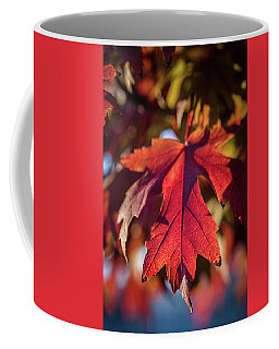 Fall Color 5528 13 Coffee Mug