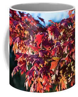 Fall Color 5528 14 Coffee Mug