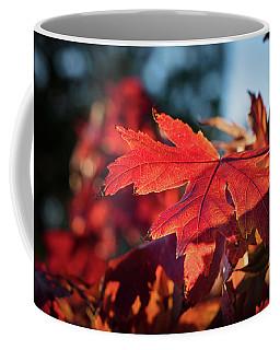 Fall Color 5528 23 Coffee Mug by M K  Miller