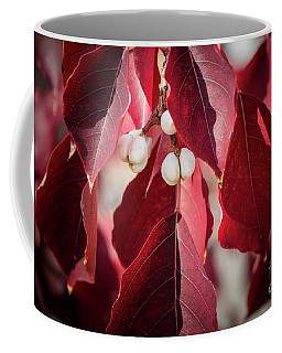 Fall Color 5528 28 Coffee Mug