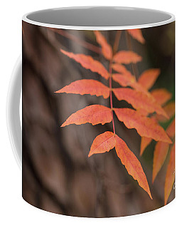 Fall Color 5528 30 Coffee Mug