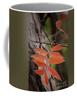 Fall Color 5528 32 Coffee Mug