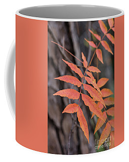 Fall Color 5528 33 Coffee Mug