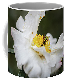 Fall Color 5528 35 Coffee Mug