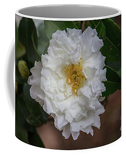 Fall Color 5528 37 Coffee Mug
