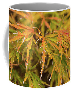 Fall Color 5528 41 Coffee Mug