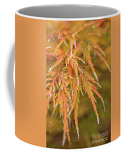 Fall Color 5528 43 Coffee Mug