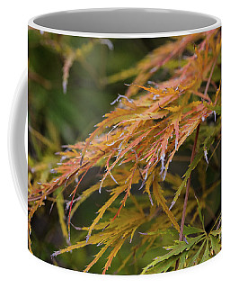 Fall Color 5528 44 Coffee Mug