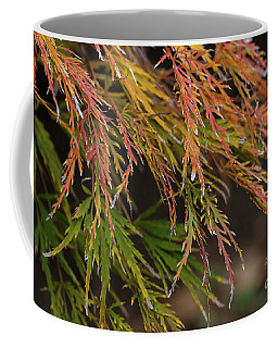 Fall Color 5528 45 Coffee Mug