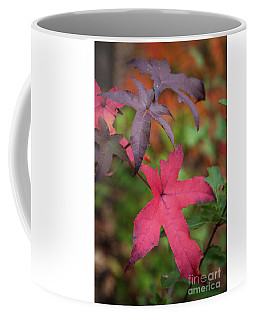Fall Color 5528 47 Coffee Mug