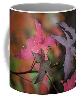 Fall Color 5528 48 Coffee Mug