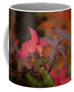 Fall Color 5528 49 Coffee Mug