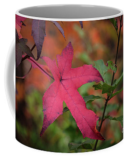 Fall Color 5528 50 Coffee Mug